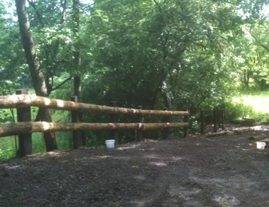 Woodland fencing in Somerset and Devon